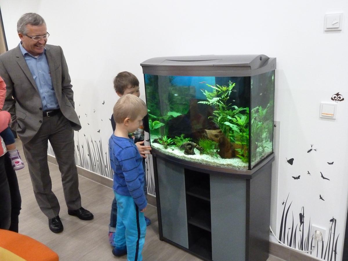 ein komplettes aquarium als geschenk f r den kindergarten thyrnau willkommen im blog von immo. Black Bedroom Furniture Sets. Home Design Ideas